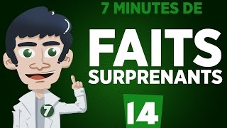 7 minutes de faits surprenants #14