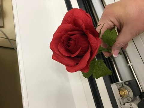 Chat Around The Mat - Episode 6 - Project Friday - Crepe Paper Roses