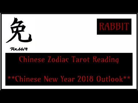 **RABBIT** ~ Golden Fortune! ~ Chinese New Year Forecast