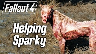 Fallout 4 - Helping Sparky the Wounded Dog Random Encounter