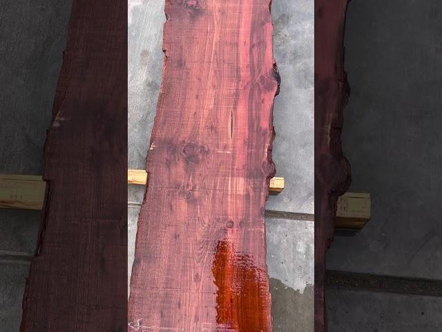 Old Growth Redwood Slab #24