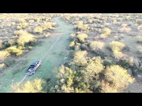 Drone Hog Hunting