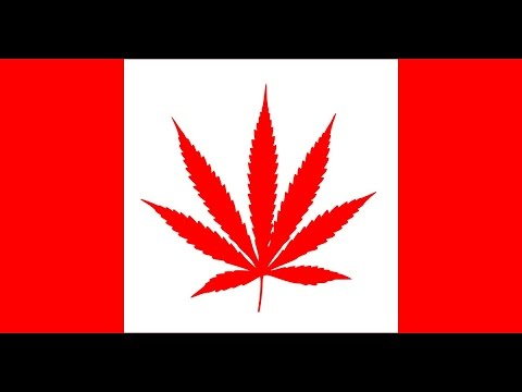Top 10 Canadian marijuana stocks to buy now // Medical marijuana stocks investing, cannabis pot weed