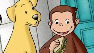 Curious George 🐵 George Dog Counter 🐵 Kids Cartoon 🐵 Kids Movies 🐵Videos for Kids