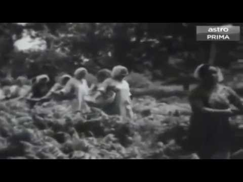 OST Musang Berjanggut 1959 - Mari Kita Ke Ladang