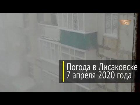 Погода в Лисаковске 7 апреля 2020 года