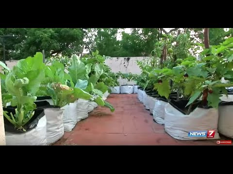 Learn about tn govt subsidy for setting up terrace gardens for Terrace vegetable garden by harikumar