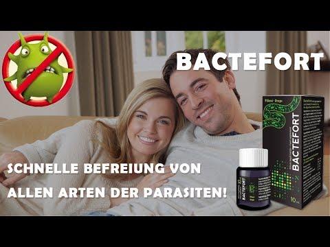 bactefort-deutschland