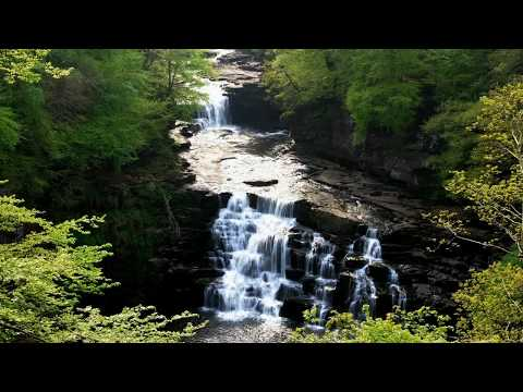 Relaxing and soothing music and sounds of nature. Расслабляющая успокаивающая музыка и звуки природы