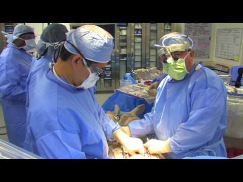 Coronary Artery Bypass with Sevak Darbinian, MD