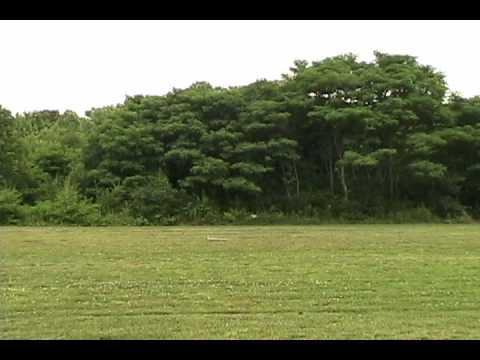 Lockheed Martin Samarai monocopter UAV