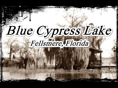 Middletons Fish Camp - Blue Cypress Lake
