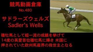 【競馬】サドラーズウェルズ Sadler's Wells【No 480】