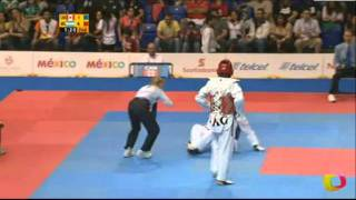 Sebastien Michaud (CAN) v Sebastian Crismanich (ARG) | Taekwondo at the 2011 Pan Am Games