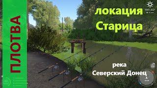 Русская рыбалка 4 река Северский Донец Плотва у разбитого моста