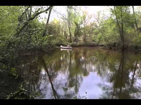 Fishing flat creek off lake palestine - YouTube