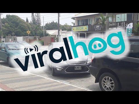 Tricky Car  || ViralHog