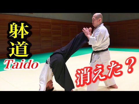 TAIDO, The Body disappears, the Kick appears! English subtitles