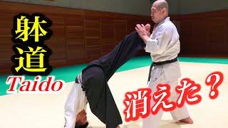 【躰道】消える身体!飛び出す蹴り!TAIDO, The Body disappears, the Kick appears! English subtitles