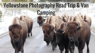 Life In A Tiny House Called Fy Nyth - Yellowstone Trip