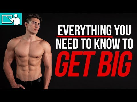 BULKING 101 | Calories, Macros, Weight Gain Targets, Intermittent Fasting, EVERYTHING!