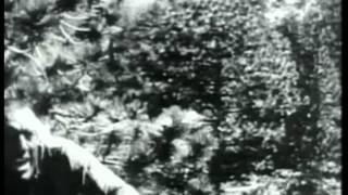 Birth of a Nation (1915), woman throws herself off cliff