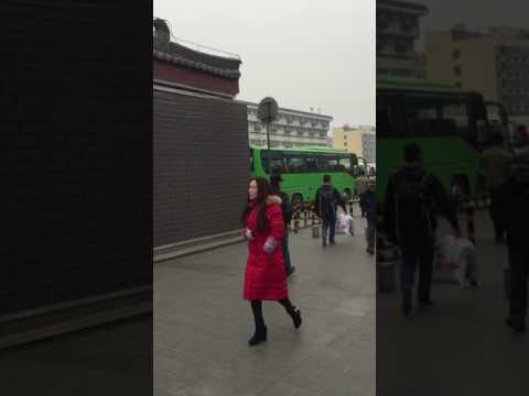How to get bus to Terracotta Warriors Museum at Xi'an Railway Station?