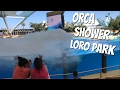 Vom Orca Wal gut nass gemacht in Slow Motion  - Loro Park Teneriffa