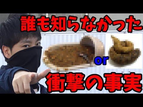 【閲覧注意】『カレー味のウンコ』と『ウンコ味のカレー』食べるならどっち!?究極の質問にMENSA会員が答える!!【クレハプロジェクト】