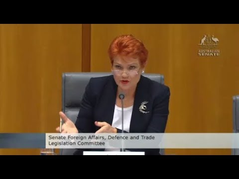 Pauline Hanson asks if pump-jet submarines can only stay und
