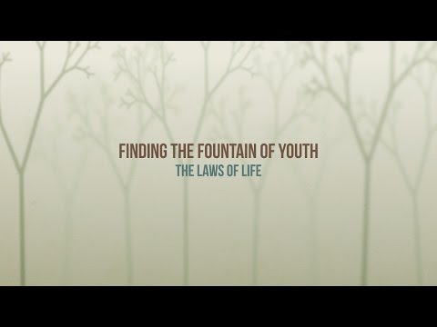 381 - The Laws of Life / Fountain of Youth - Diane Burnett