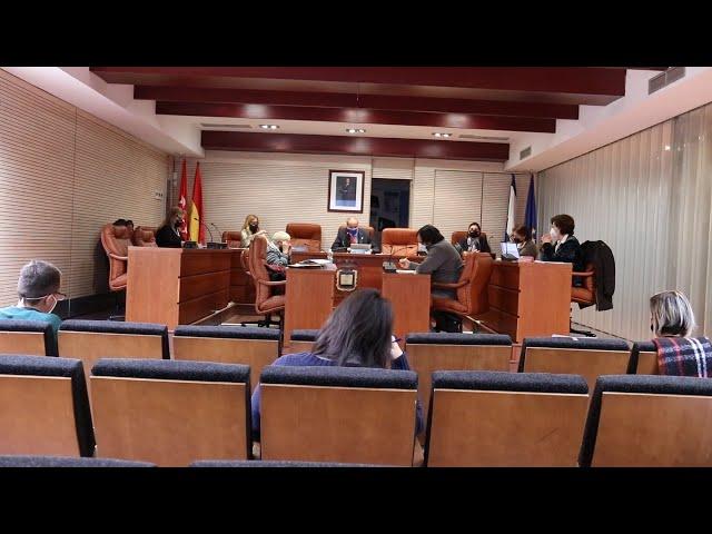 Pleno Ordinario Sevilla la Nueva 11 febrero 2021
