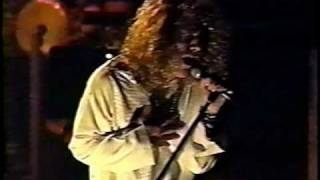 Jimmy Page and Robert Plant - In The Evening (live in Detroit 1995)