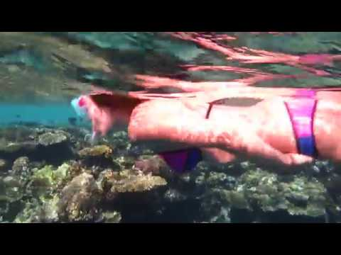 Bikini Girl Snorkeling - Free diving