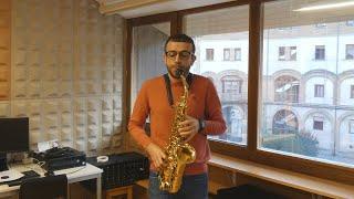 David Hernando Vitores y Sandro Bakhuashvili en Arbeiza. Saxofón y piano.
