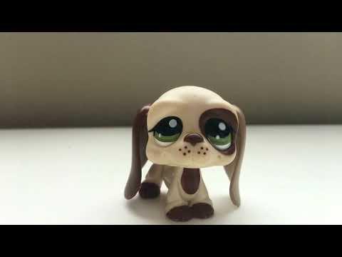 Unboxing Littlest Pet Shop/ LPS Basset Hound