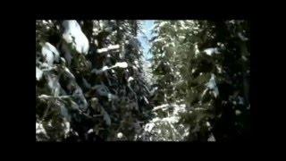 А Звинцов Долгая зима(, 2012-03-18T16:46:08.000Z)
