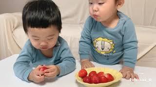 쌍둥이육아 #102 엄마표놀이 | 독후활동 | 딸기 |…