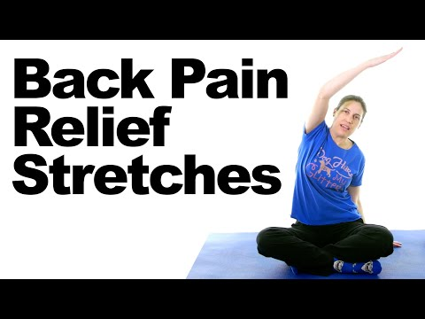 Back Pain Relief Stretches – 5 Minute Real Time Routine