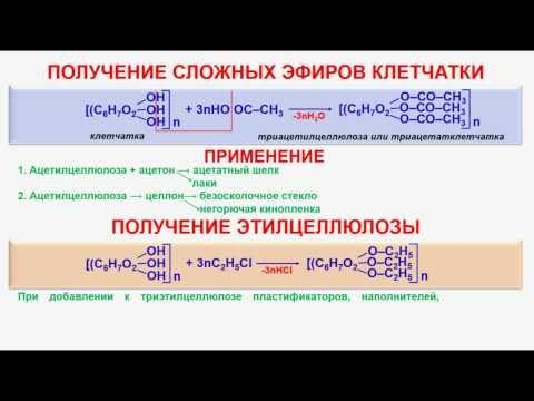 № 145. Органическая химия. Тема 21. Углеводы. Часть 19. Клейстеризация крахмала