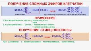 № 151. Органическая химия. Тема 21. Углеводы. Часть 25. Сложные эфиры клетчатки