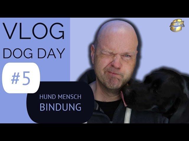 Hund - Mensch - Beziehung / Bindung ► Warum Bindungsarbeit so wichtig ist ►#5 Vlog Dog Day -