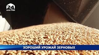 Несмотря на кризис в этом году урожай зерновых намного выше прошлых лет