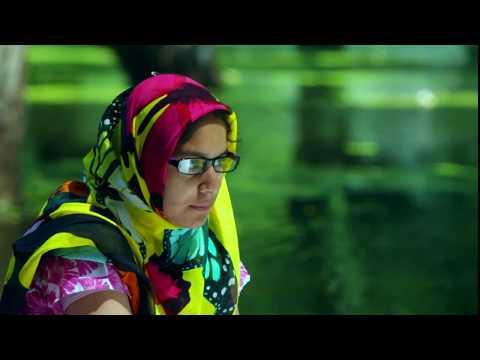 Goodbye, Mayfly - a film by Siddhartha Gigoo