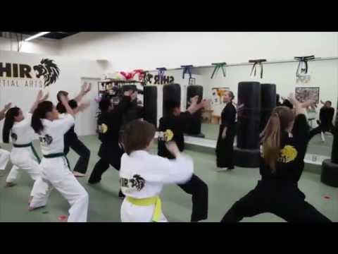 Shir Martial Arts of Dublin CA