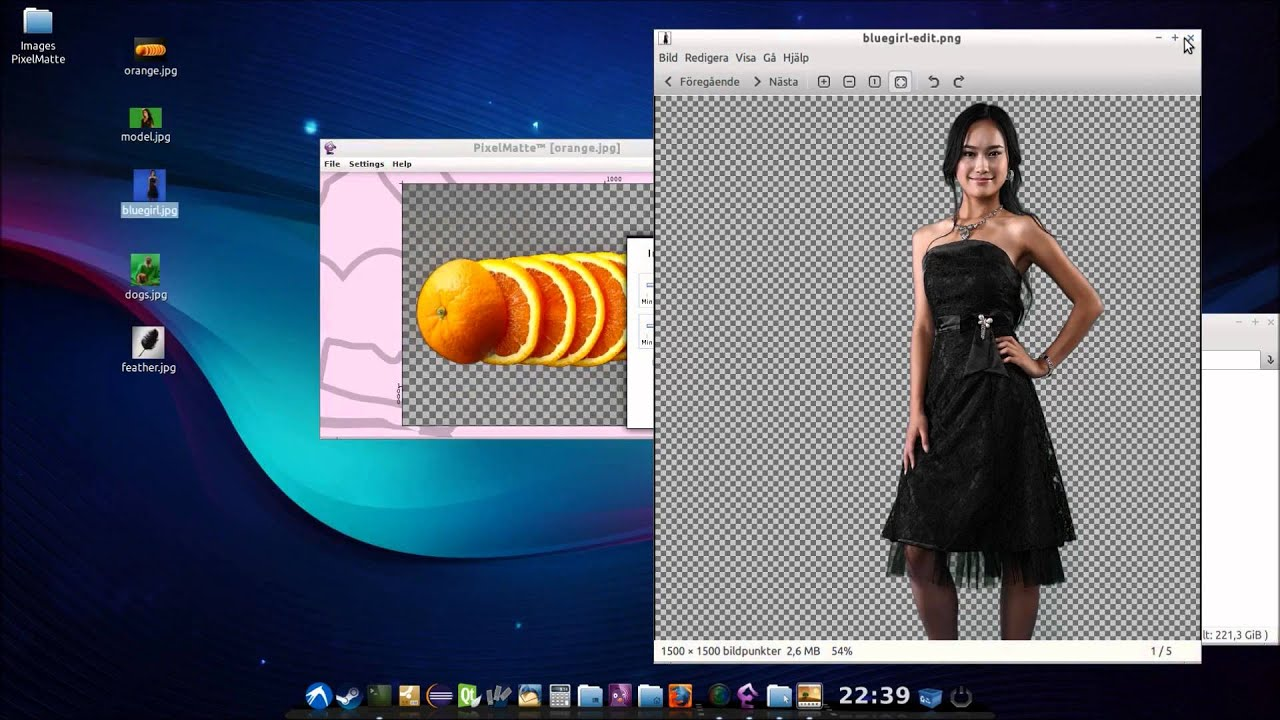 PixelMatte™ - Automated Image Background Removal