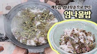 두릅요리 두릅장아찌 보다 개두릅 엄나무순으로 영양밥 만들기
