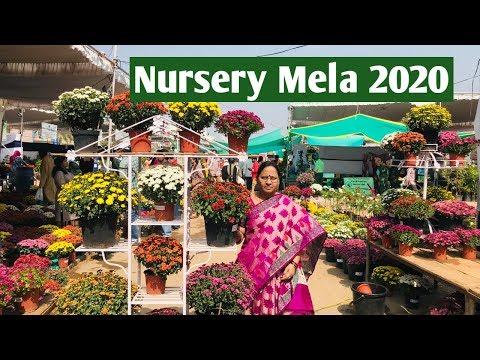 నర్సరి మేళ#2020 #Nursery Mela at Peoples Plaza from Jan 23-27 #Necklace Road#Hyderabad part-1.