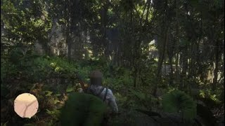 Red Dead Redemption 2 Exploring the island