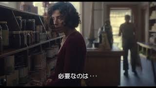 『しあわせの絵の具 愛を描く人 モード・ルイス』本編映像